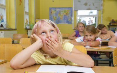 Hoogbegaafdheid - schoolse en sociale problemen